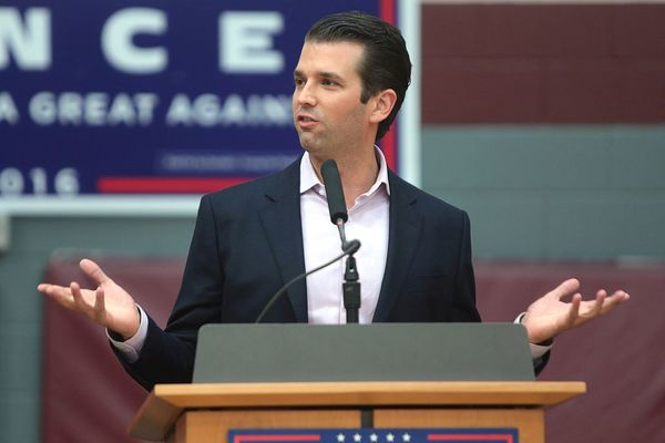 Trump Jr. Destroys Avenatti's Endorsement of 'Sleepy Joe' Biden