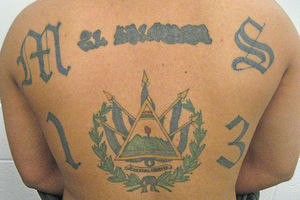 TERRIFYING Latin Gang's Murderous Plot Foiled