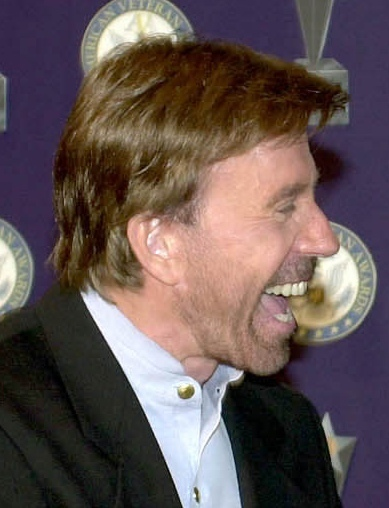 Chuck Norris' Incredible Border Wall Solution