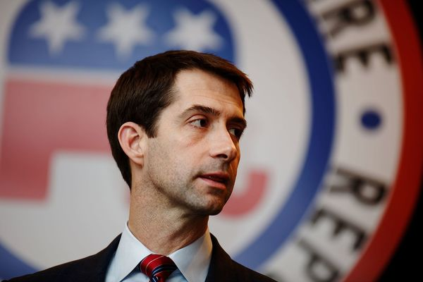 Democrats Fail to Find Candidate to Challenge Cotton