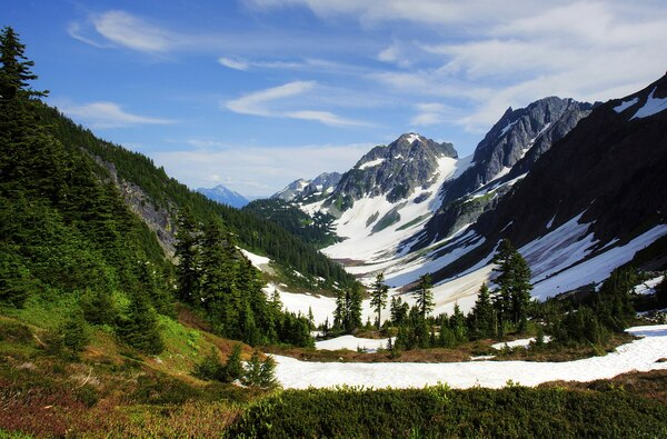 19.) Whatcom County, Washington
