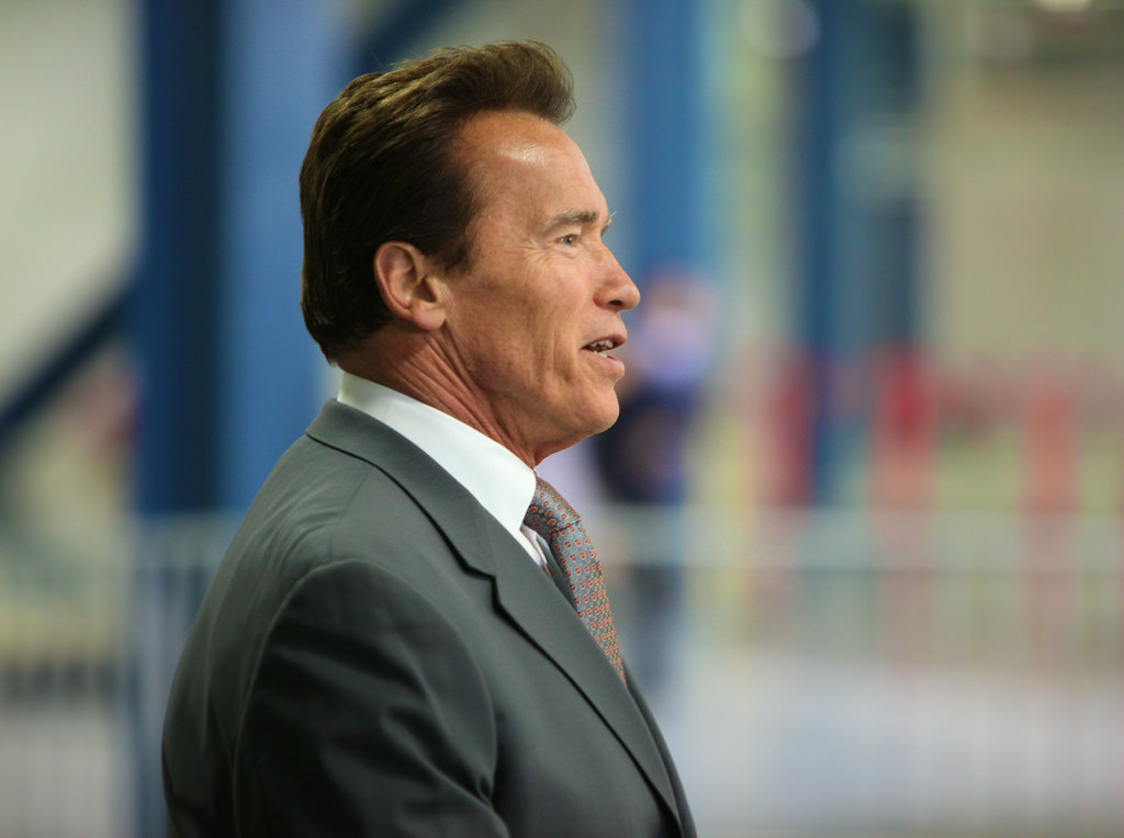 Arnold Schwarzenegger: I Was Joking About Smashing Trump's Face